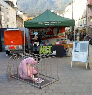 Kultur_und_Tierrechte