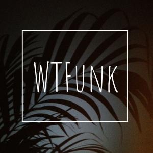 whatthefunk2