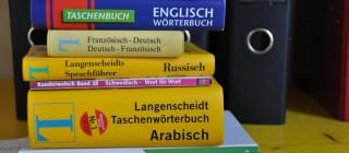 Mehrsprachigkeit und Integration